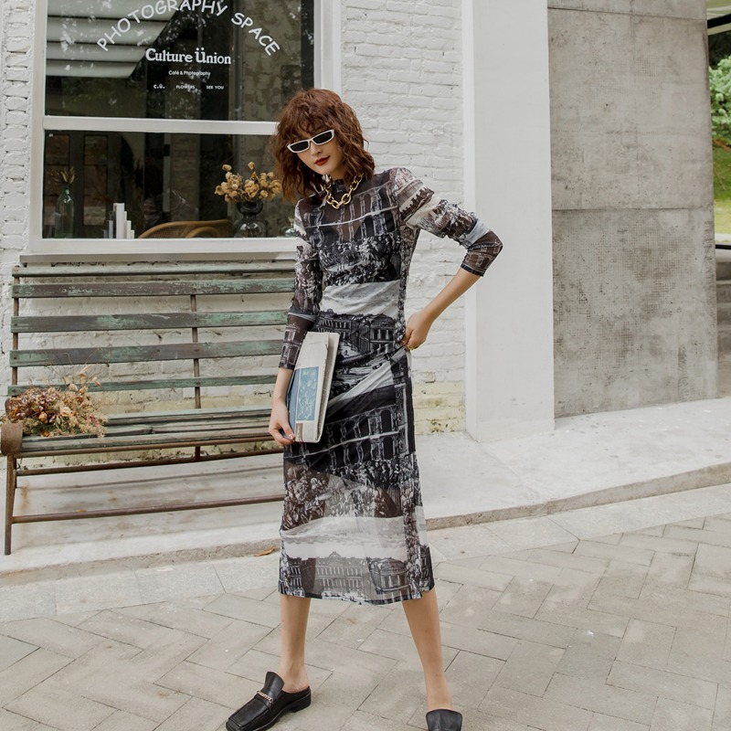 Women Printed Perspective Dress